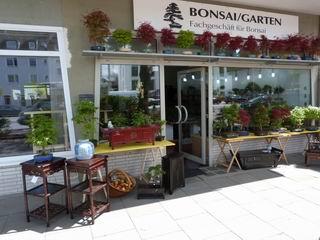 Bonsai Garten außen